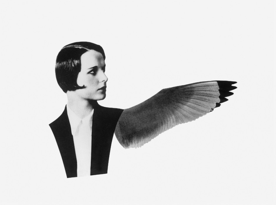 A black-and-white collage featurng with no arms and one wing.