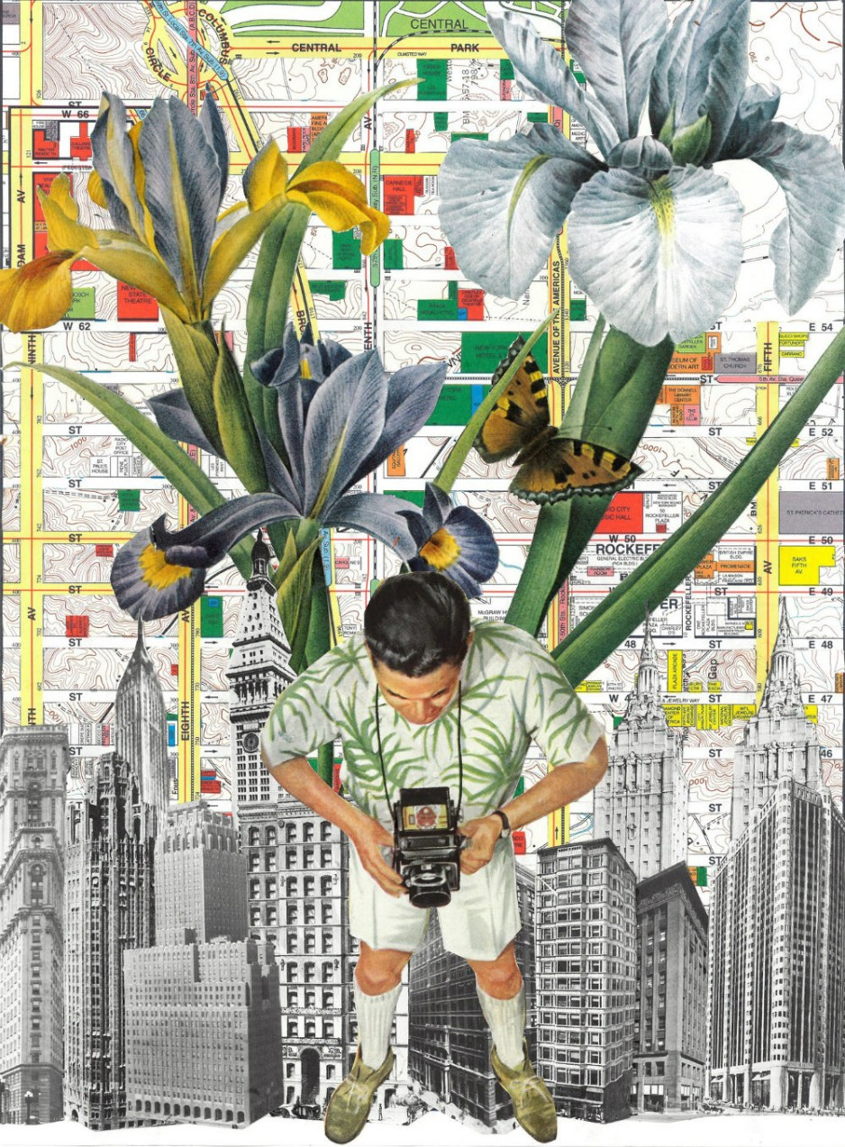 An absract collage of a man looking down on a map, with a butterfly above them.