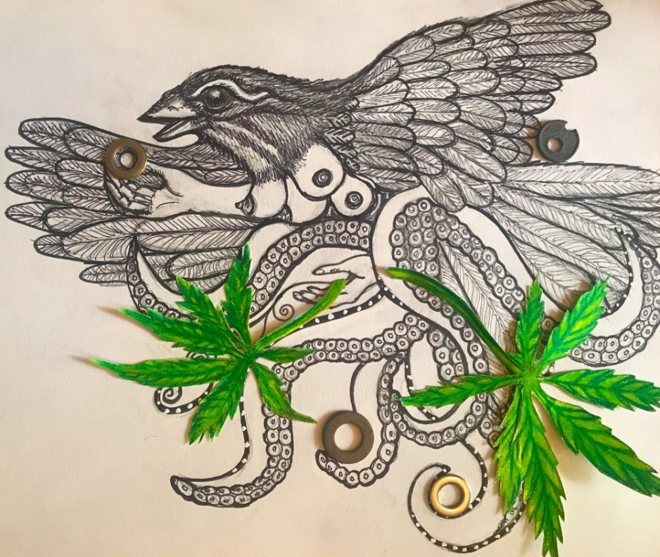 A mixed-media cisual of a flying bird, with Octopus legs holding two marijuana leaves.
