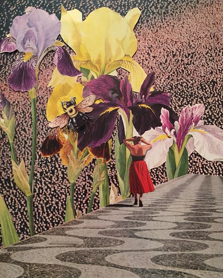 A collage of a woman walking past flowers much taller than her, like a dream.