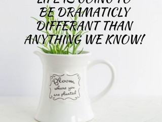 Life is Going to be Dramaticly Differant
